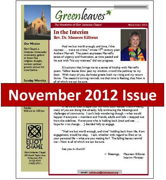Nov2012newslettericon